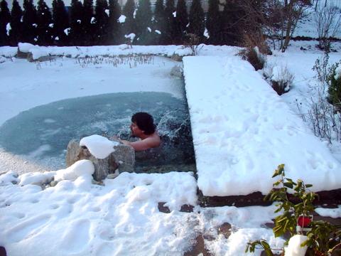 Bach schwimmteich for Teich winter